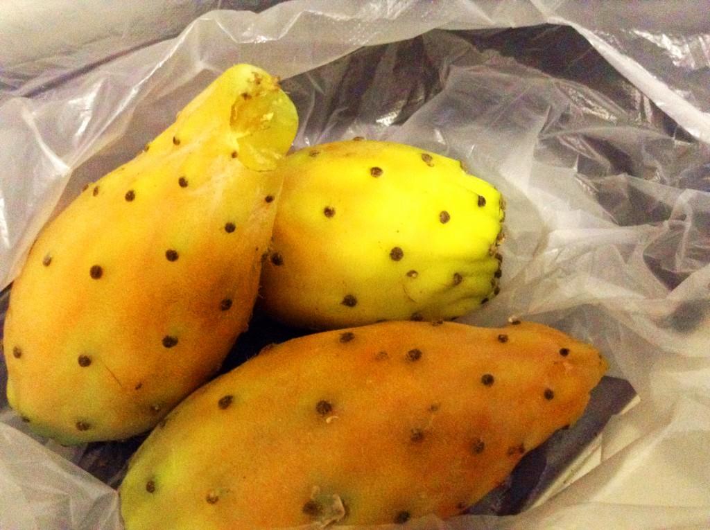 spiselig kaktus, kaktus knop, spiselig kaktus knopper, spiselige kaktus knupper, spis en kaktus, tyrkiske specialiteter, specialiteter fra tyrkiet